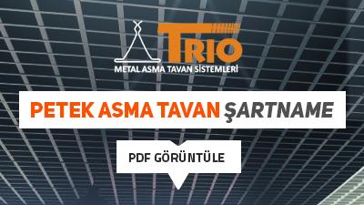 trio-sartname-pdf