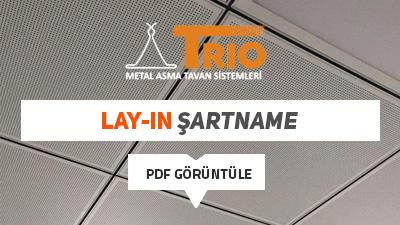 lay-in-sartname